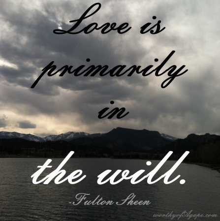 love is primarily in the will